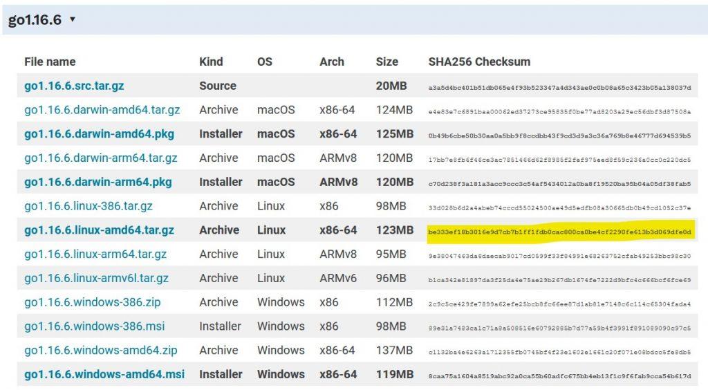 Страница загрузки Go - Хостинг своего сайта при помощи Caddy в Ubuntu 20.04
